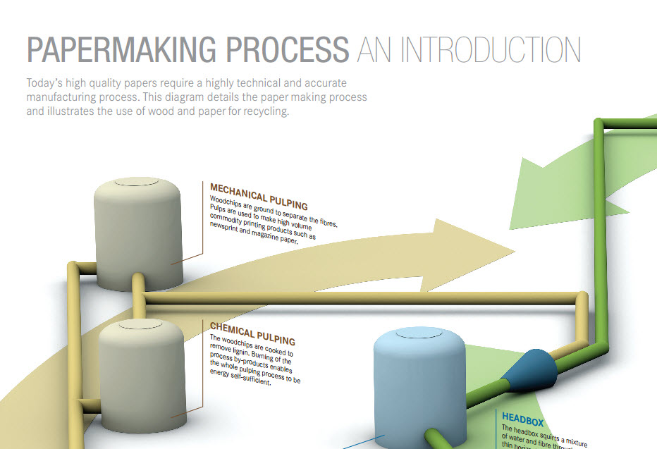 How is paper Made? An Infographic