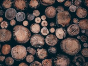 Image for wood used as paper pulp.